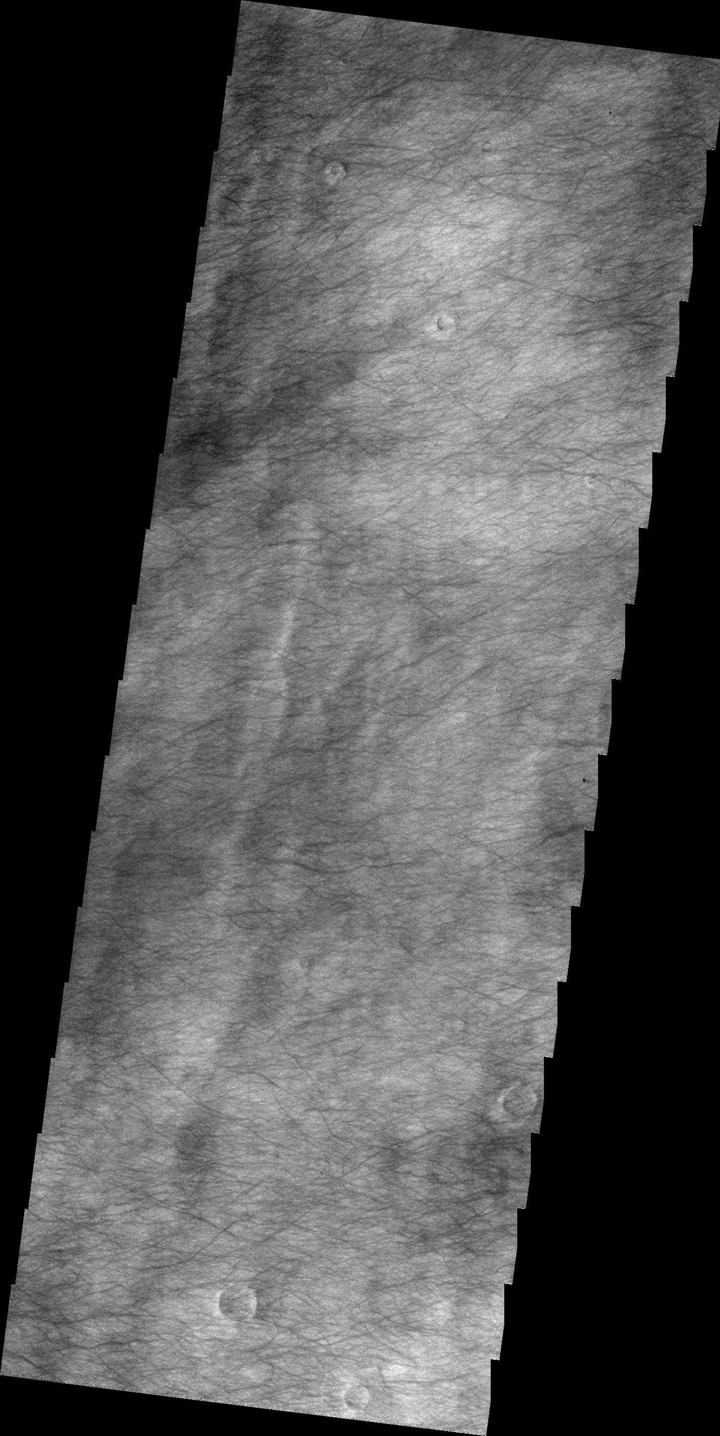 dust tracks on a road pdf