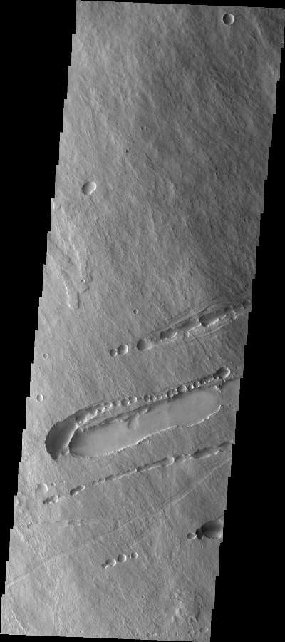 Scaled Image