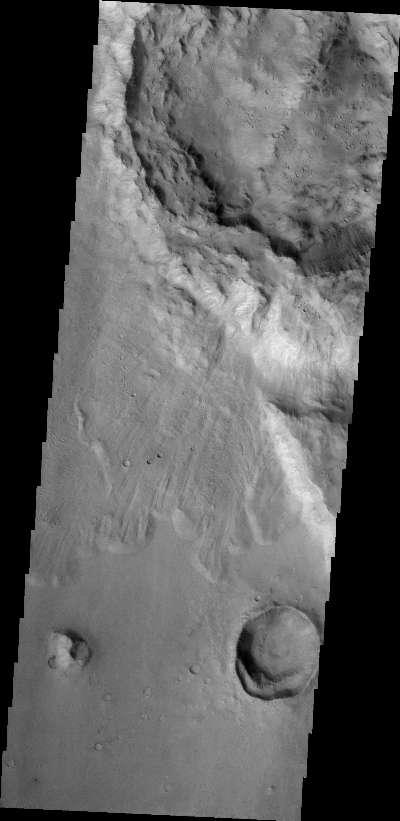 Scaled Image